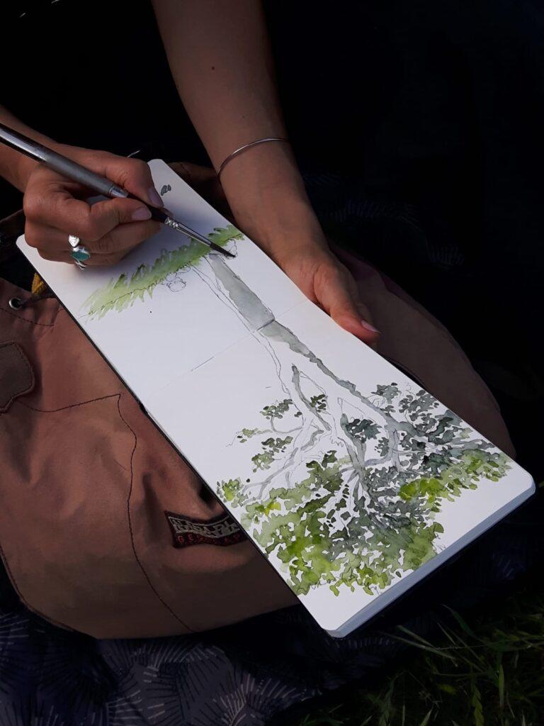 acquerellando il pino dell'eremo